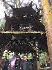 chengdu - qingcheng mountain pagoda