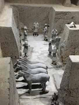xian - tkk pferde