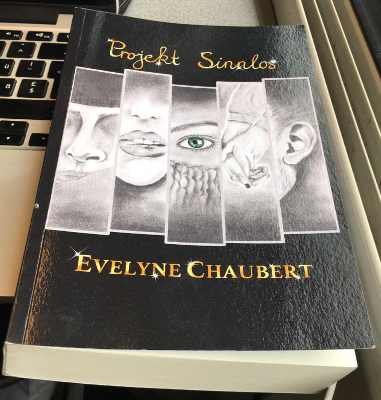 Projekt Sinnlos Buch